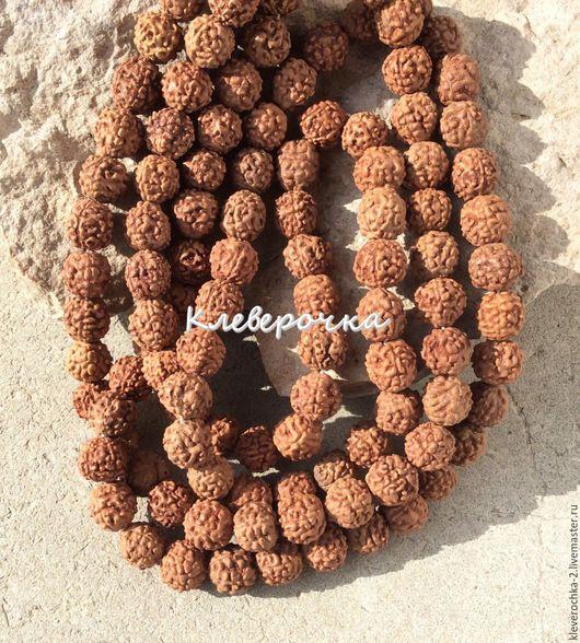Для украшений ручной работы. Ярмарка Мастеров - ручная работа. Купить .Рудракша 8-9 мм плод индийский орех бусины для украшений. Handmade.