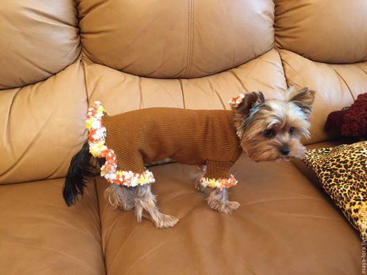 """Одежда для собак, ручной работы. Ярмарка Мастеров - ручная работа. Купить Одежда для собак. Свитер  """"Бахромушка"""". Handmade. Свитер для собак"""