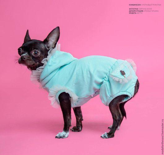 """Одежда для собак, ручной работы. Ярмарка Мастеров - ручная работа. Купить Комбинезон """"мятный"""". Handmade. Мятный, собачка, фатин"""
