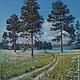 """Пейзаж ручной работы. Ярмарка Мастеров - ручная работа. Купить Картина маслом """"Прогулка под соснами"""" (пейзаж 40на50см). Handmade."""