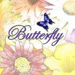 butterfly-777