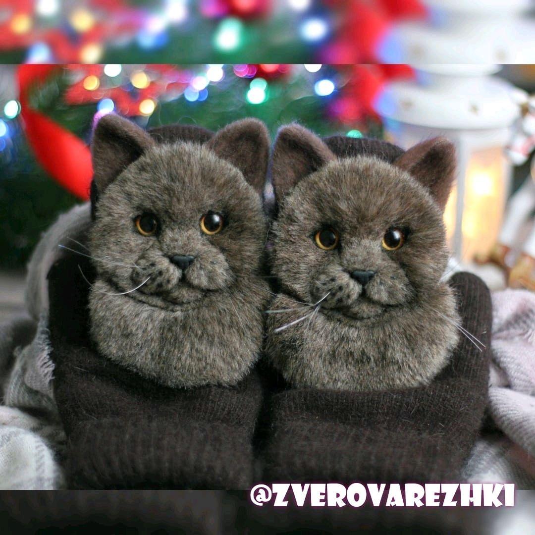 Варежки с британским котом, Варежки, Волгоград,  Фото №1