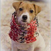 """Для домашних животных, ручной работы. Ярмарка Мастеров - ручная работа Снуд для собаки """"Рябиновая осень"""". Handmade."""