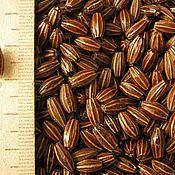 Материалы для творчества ручной работы. Ярмарка Мастеров - ручная работа бусины из косточек дикой маслины. Handmade.