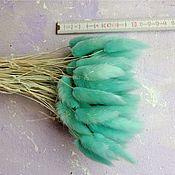 Сухоцветы ручной работы. Ярмарка Мастеров - ручная работа Лагурус 50 шт сухоцвет, мятно-голубой. Handmade.