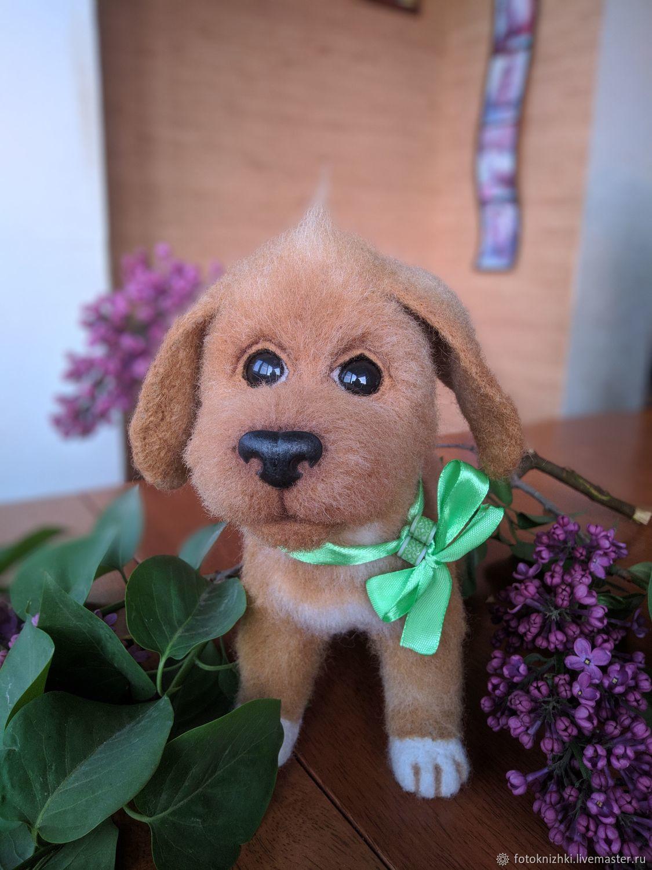 Собака из шерсти, Войлочная игрушка, Краснодар,  Фото №1