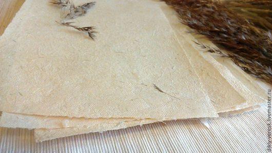 бумага ручного литья, бумага ручной работы, бумага из трав, ручной отлив, ручное литье бумаги, бумага ручной выделки, бумага ручной вычерпки, Алла ПОдоляк, Дикий вереск, мастерская бумаги
