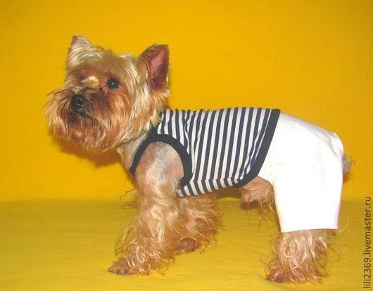 """Одежда для собак, ручной работы. Ярмарка Мастеров - ручная работа. Купить Комплект """"Моряк"""". Handmade. Комплект, Йоркширский терьер, брюки"""