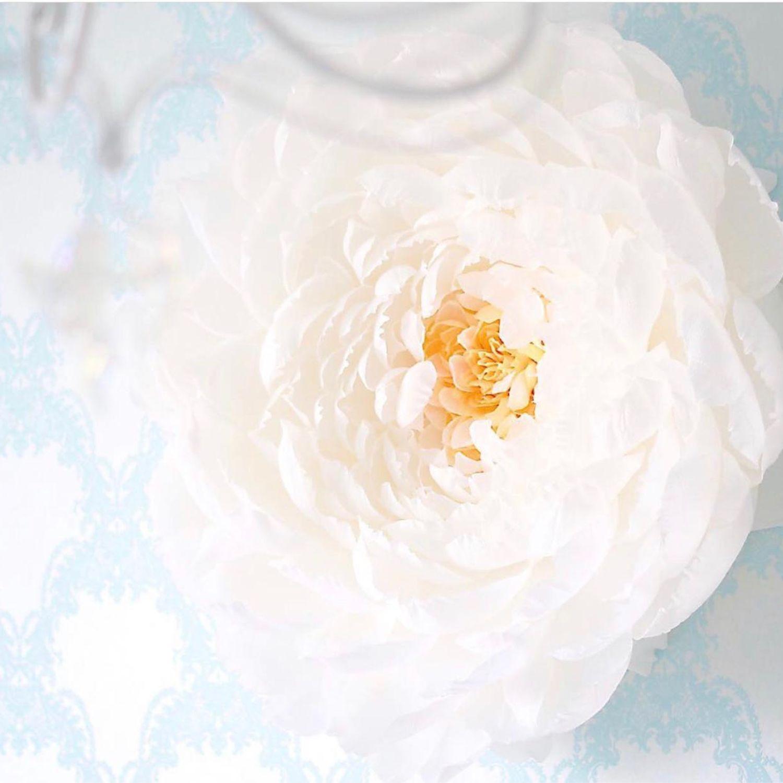 Большие бумажные цветы, Оформление зала, Москва,  Фото №1