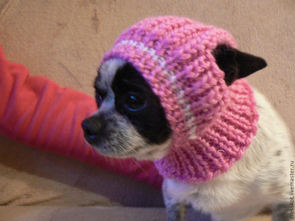 204Вяжем шапку для собаки с у