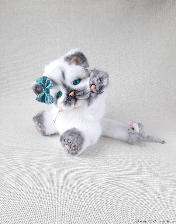 The kitten Teddy, Teddy Toys, Zheleznodorozhny,  Фото №1
