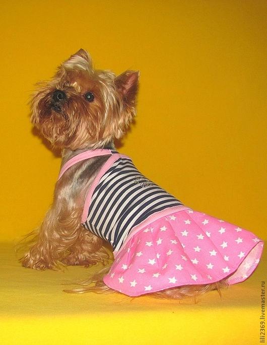 """Одежда для собак, ручной работы. Ярмарка Мастеров - ручная работа. Купить Комплект """"Ах,Лето!"""". Handmade. Комплект, йорк, хлопок"""