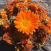 Фен-шуй и эзотерика handmade. Livemaster - original item Calendula medicinal herb dry. Handmade.