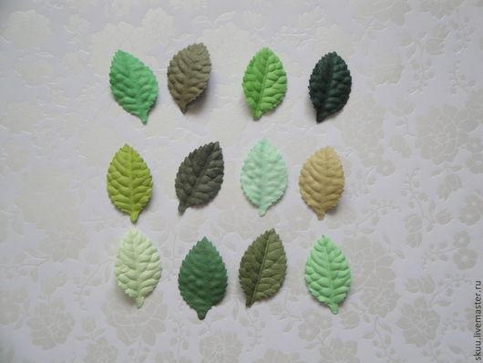 Открытки и скрапбукинг ручной работы. Ярмарка Мастеров - ручная работа. Купить Листья зеленые без стебля скрапбукинга. Handmade. Зеленый