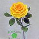 Цветы ручной работы. Ярмарка Мастеров - ручная работа. Купить Роза из полимерной глины. Handmade. Разноцветный, интерьерная композиция, женщина