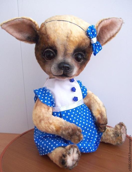 Мишки Тедди ручной работы. Ярмарка Мастеров - ручная работа. Купить Чиша. Handmade. Золотой, чихуа, плюш винтажный