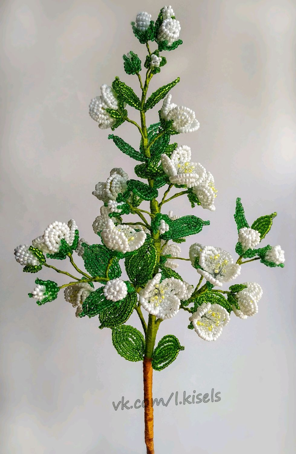 Жасмин из бисера, Цветы, Орел,  Фото №1