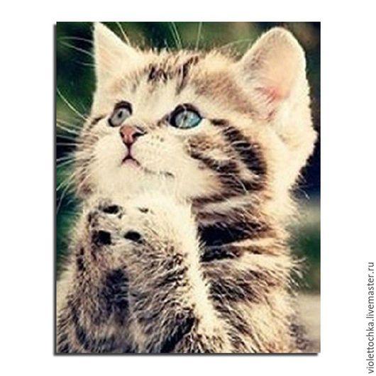 Алмазная мозаика, алмазная вышивка`Милый котенок` (артикул 20)