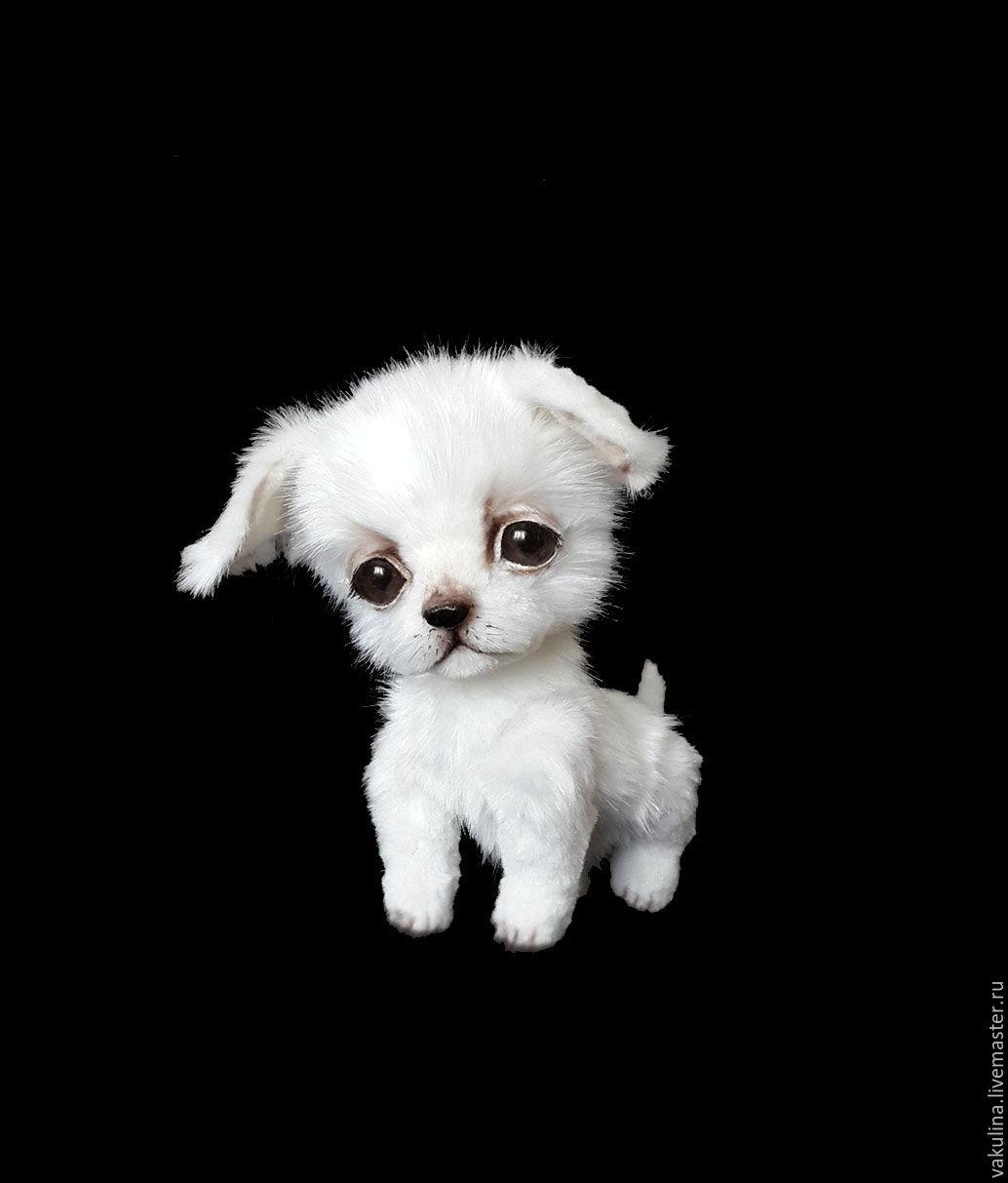 Daftar Harga Handmade Wolf Maltese Termurah 2018 Loop Casio Europe Mq 71 1b Jam Tangan Pria Black Strap Resin Chihuahua Puppy Cupcake Shop Online On Livemaster With Shipping Teddy Bears Order Vakulina
