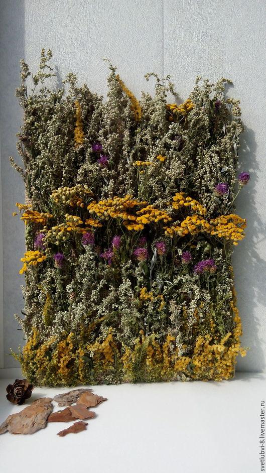 """Картины цветов ручной работы. Ярмарка Мастеров - ручная работа. Купить Эко панно """"Живой ковер из трав"""". Handmade. Комбинированный"""