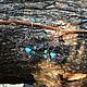 Серьги ручной работы. Серьги Крылья бабочки. Мастерская ГришЛАНдия (grishlandia). Интернет-магазин Ярмарка Мастеров. Крылья бабочки