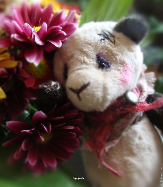 Мишки Тедди ручной работы. Ярмарка Мастеров - ручная работа. Купить Панда. Handmade. Чёрно-белый, мишка тедди, подарок