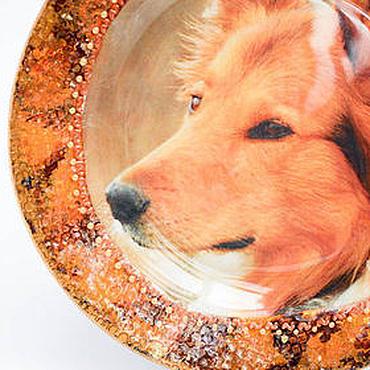 Посуда ручной работы. Ярмарка Мастеров - ручная работа Тарелка фото Рыжий колли. Декупаж. Декоративная.Тарелка собака.. Handmade.