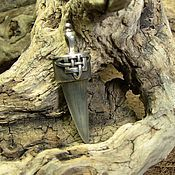 Украшения ручной работы. Ярмарка Мастеров - ручная работа Зуб акулы. Handmade.