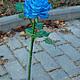 """Цветы ручной работы. Роза синяя """"blue"""". Катерина Доброва (Кетлин). Интернет-магазин Ярмарка Мастеров. Роза из полимерной глины"""