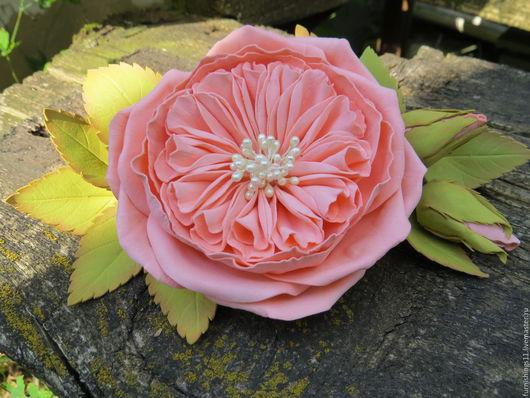 Роза персикового цвета Дэвида Остина пионовидная