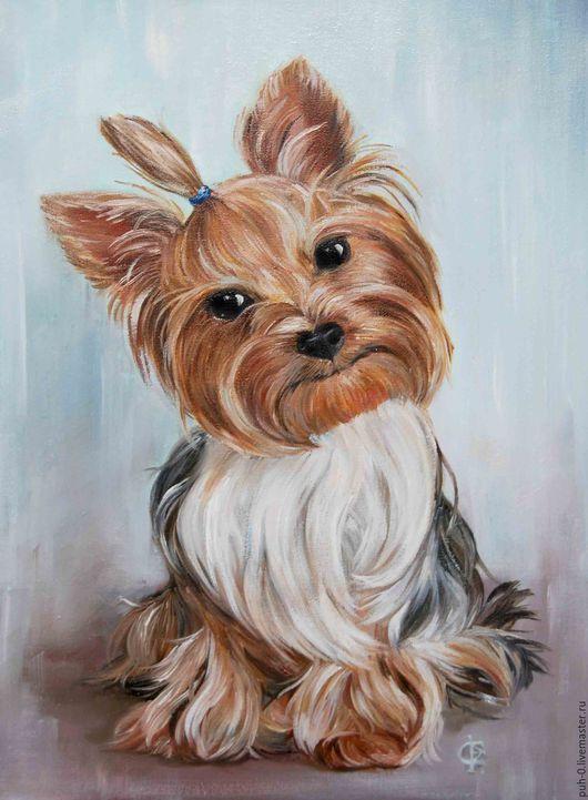 Животные ручной работы. Ярмарка Мастеров - ручная работа. Купить портрет собаки. Handmade. Голубой, Йоркширский терьер, собака