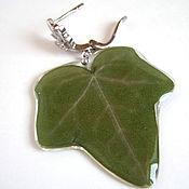 Украшения handmade. Livemaster - original item Earrings with Real Ivy Leaves Korean Accessories Eco. Handmade.