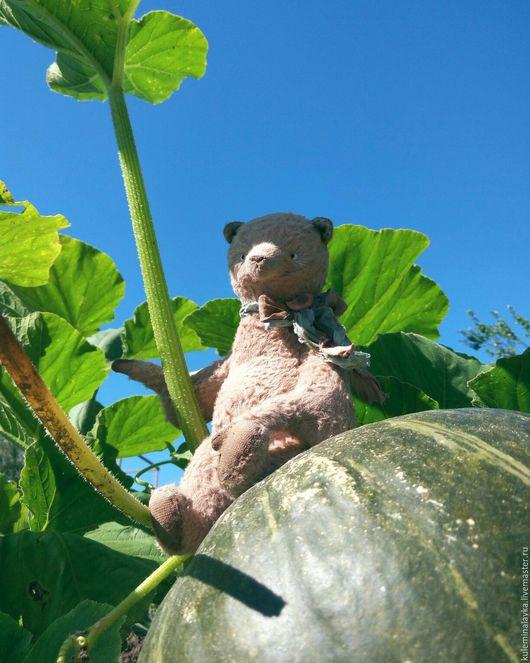 Мишки Тедди ручной работы. Ярмарка Мастеров - ручная работа. Купить Шоколадный мишка. Handmade. Коричневый, медведь, коллекционная игрушка