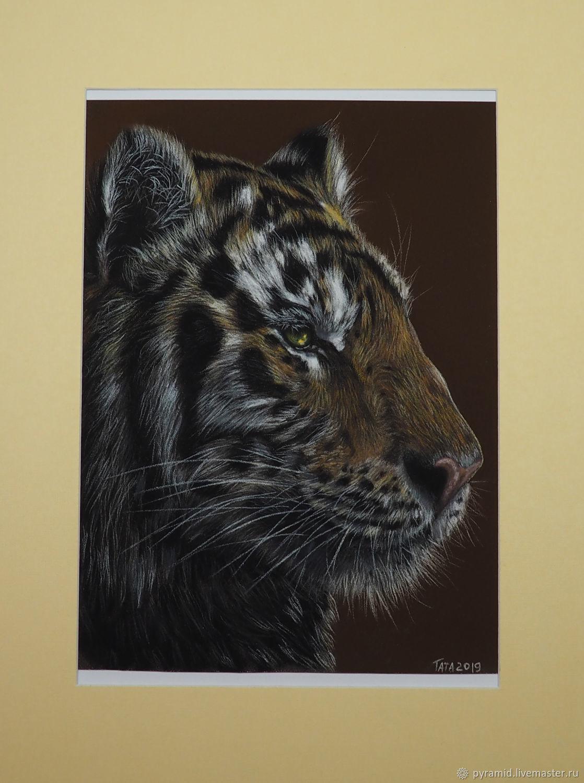 Картина пастелью котенок тигр кот кошка лиса, Картины, Москва,  Фото №1