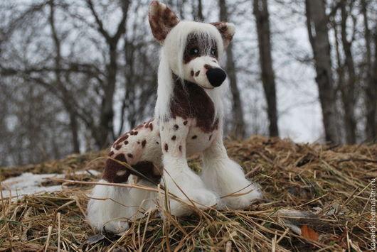 Игрушки животные, ручной работы. Ярмарка Мастеров - ручная работа. Купить Китайская хохлатая собачка. Handmade. Собака, собачка