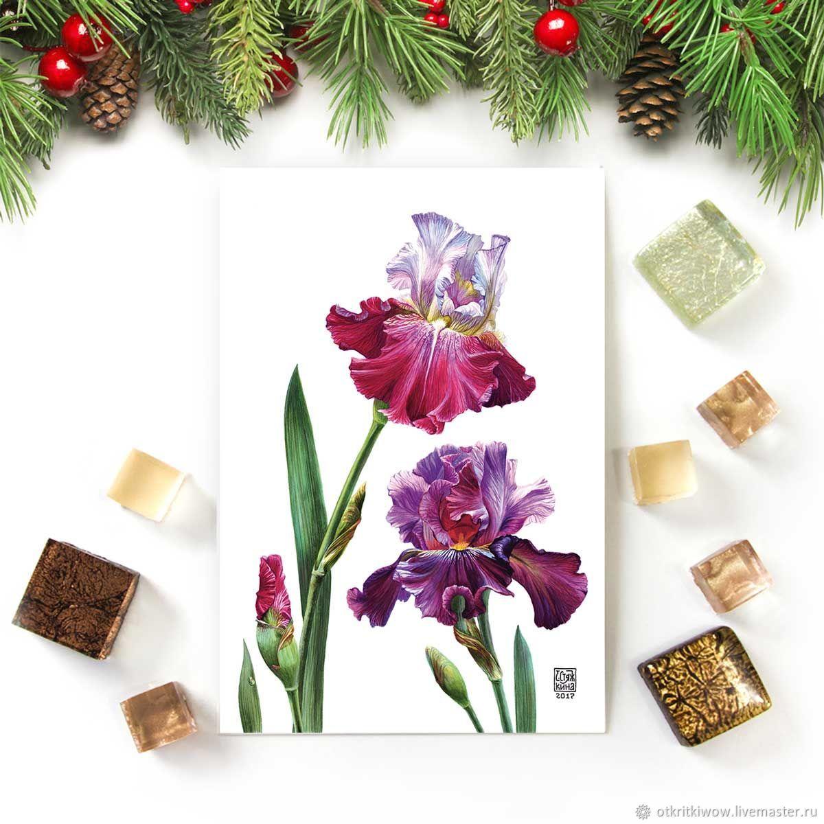 Открытка цветы Ирисы Узы любви, Открытки, Йошкар-Ола,  Фото №1