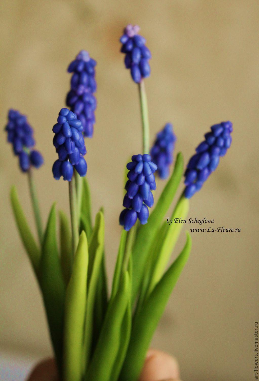 Мускарики (холодный фарфор), Цветы, Санкт-Петербург, Фото №1