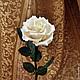 Цветы ручной работы. Розы из полимерной глины. Цветы ручной работы Виниченко Ольги. Ярмарка Мастеров. Бежевые розы, подарок