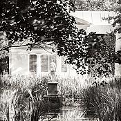 Картины и панно handmade. Livemaster - original item Black and white art photo painting, Park landscape, Pavlovsk. Handmade.