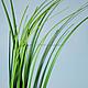 Материалы для флористики ручной работы. Ярмарка Мастеров - ручная работа. Купить Р014 Ветка искусственной зелени, длина 80 см. Handmade.