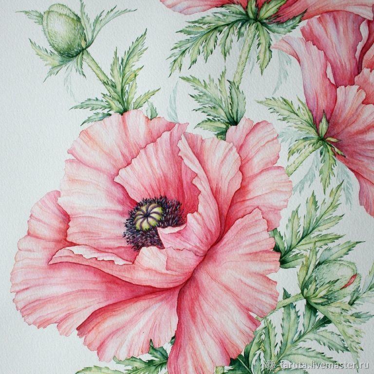 Рисунок `Розовые маки`  (фрагмент)