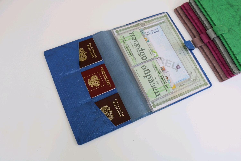 Органайзер для документов формат А4 синий питон, Папки, Москва,  Фото №1