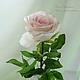 Цветы ручной работы. Ярмарка Мастеров - ручная работа. Купить Роза из полимерной глины. Handmade. Бледно-розовый