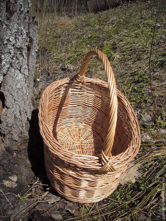 Прут в лесу 3 фотография