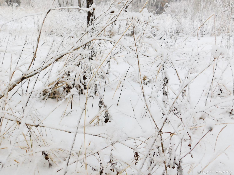 ПРОШЛОГОДНИЙ СНЕГ фотокартина, Фотокартины, Москва,  Фото №1