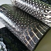 Мех ручной работы. Ярмарка Мастеров - ручная работа ЛЗО1 набор отрезов кожи змеи на основе уплотнителе. Handmade.