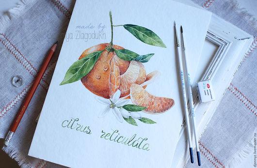 """Картины цветов ручной работы. Ярмарка Мастеров - ручная работа. Купить Акварель """"Сочный мандарин"""". Handmade. Комбинированный, мандарин, мандарины"""