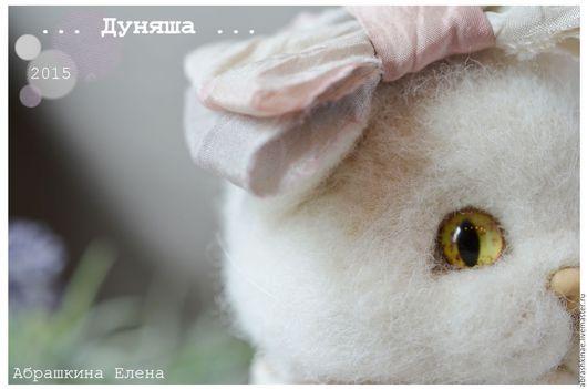 белый котенок - кошечка породы шотландская вислоухая