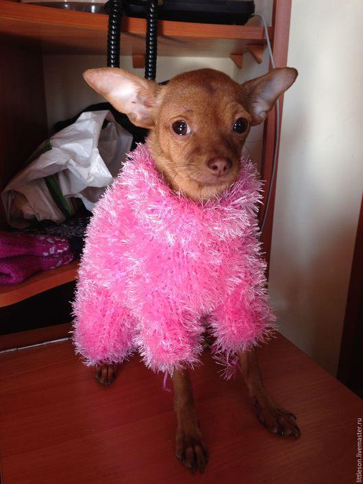 Аксессуары для собак, ручной работы. Ярмарка Мастеров - ручная работа. Купить Яркая теплая шубка для маленькой собачки. Handmade. Розовый