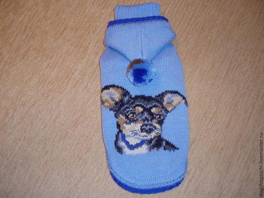 Одежда для собак, ручной работы. Ярмарка Мастеров - ручная работа. Купить Свитер для  чихуахуа авторская работа. Handmade. Голубой